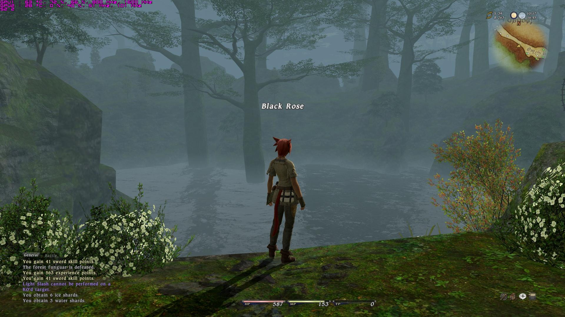 ffxivgame2010-09-0221-29-02-86