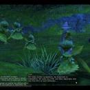 ffxiv_2010_090
